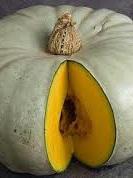 Certified Organic Pumpkin - (Crown per kg)