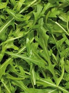 Certified Organic Rocket Salad Loose Leaf - 100g