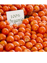Certified Organic Tomatoes - 400g