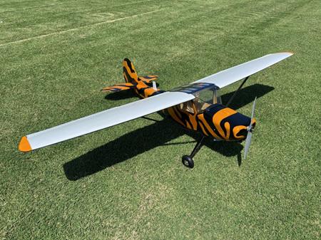 Cessna Bird Dog 87' 90 Size