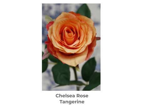 Chelsea Rose Tangerine