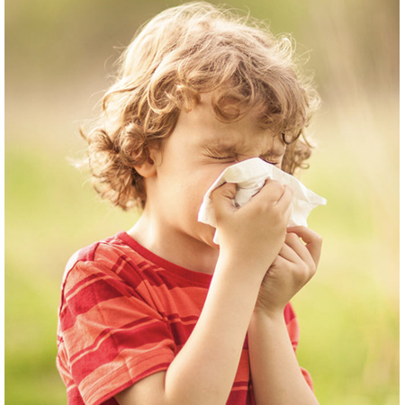 Children: How Can I Tell The Difference Between A Cold and Hay Fever?