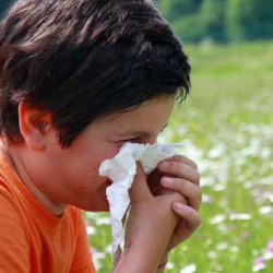 Children's Allergies