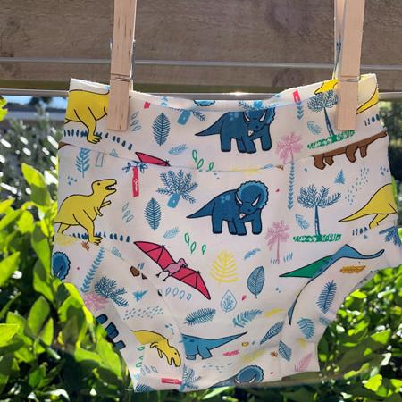 Childrens Underwear - Dinosaurs - Size 2
