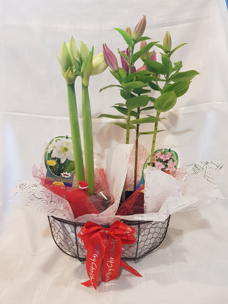 Christmas Plant Metal Basket