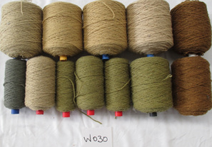 Coarse Yarn  W030  Colours of the Forest