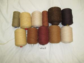 Coarse Yarn  W048  Autumn Tones