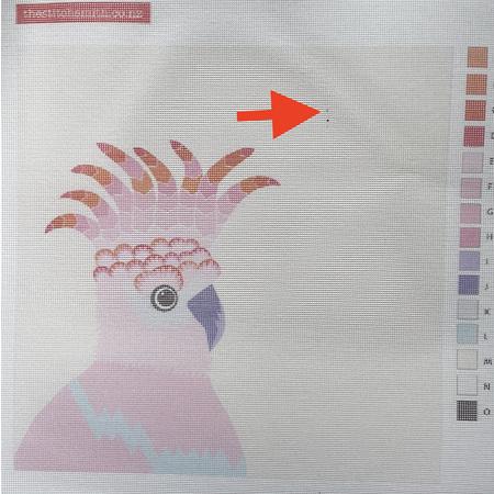 Cockatoo canvas