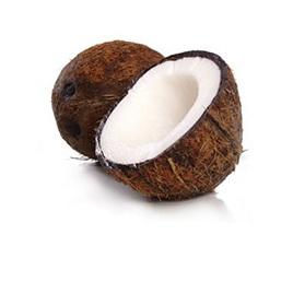 Coconut (Extra)