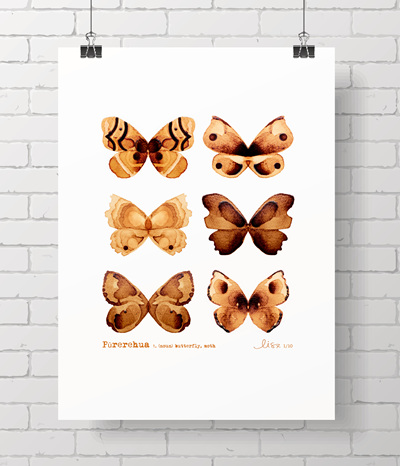 Coffee Moths - Limited edition prints