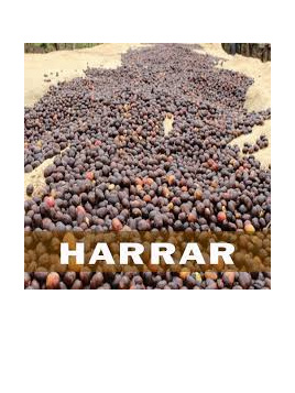 Coffee Sundried Ethiopian Harrer Expresso Grind Approx 100g