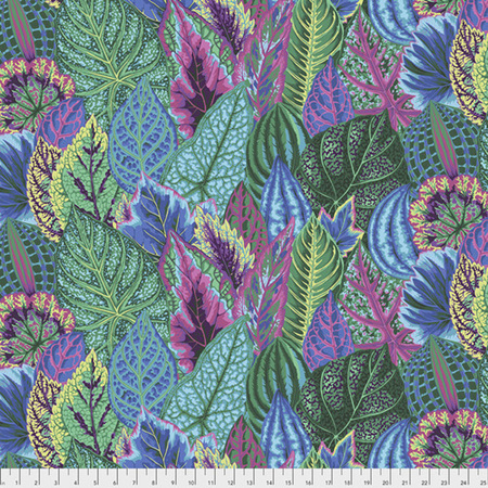 Coleus Turquoise PWPJ030129