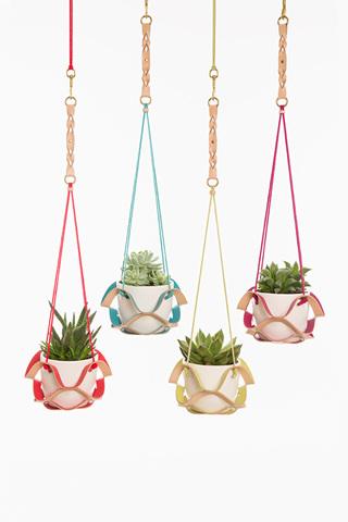 Colour Pop Plant Hanger