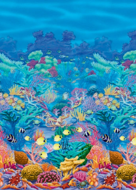 Coral reef room roll - 12m long - looks great up!