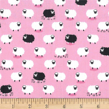 Counting Sheep Following Ewe CX8369