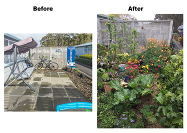 Courtyard transformation Before and After
