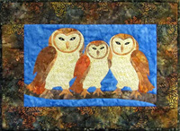 CP04548   Barn Owl Family
