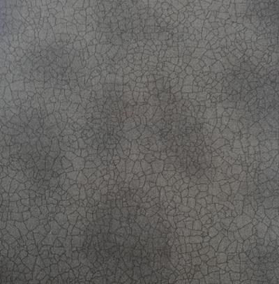 Crackle Dirt 5746116