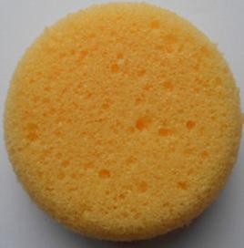 Craft Sponge