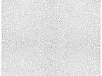 Craquelure IOD Decor Stamp