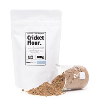 Crawlers Cricket Flour 100g