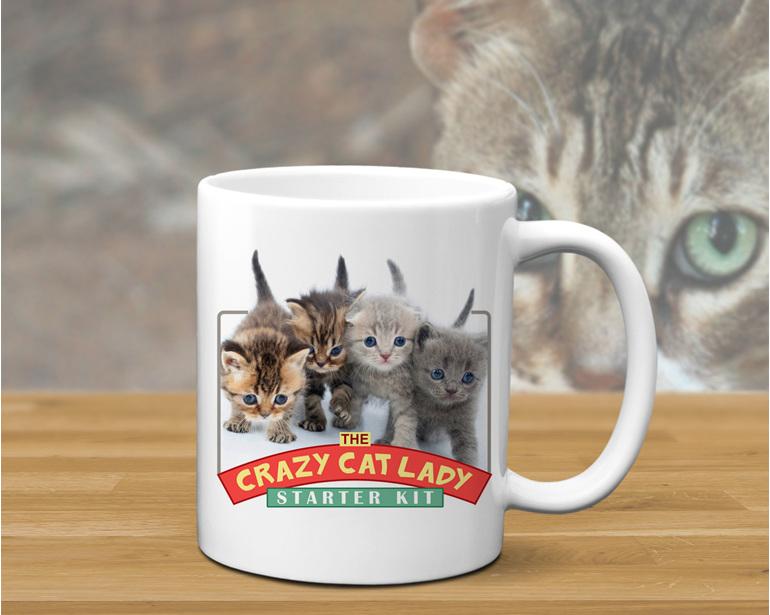 Crazy Cat lady Fun Mug