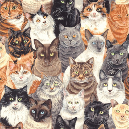 Crowded Cats NT80680101