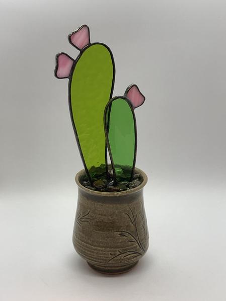 Cucumber Cactus 2021