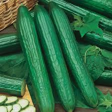 Cucumber Organic or Spray Free Each