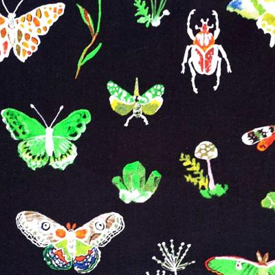 Curio - Bugs & Butterflies on Black