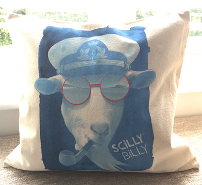 Cushion Cover - Blue Billy