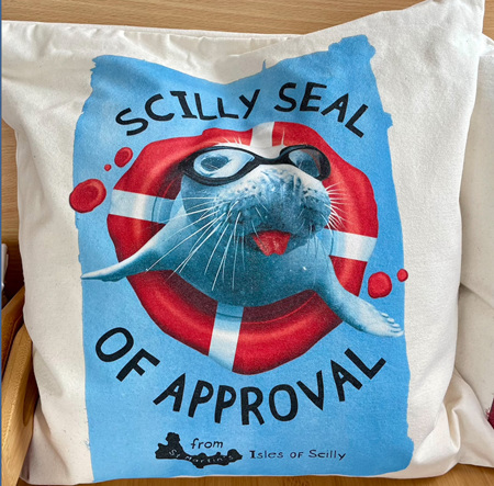 Cushion Cover - Scilly Seal