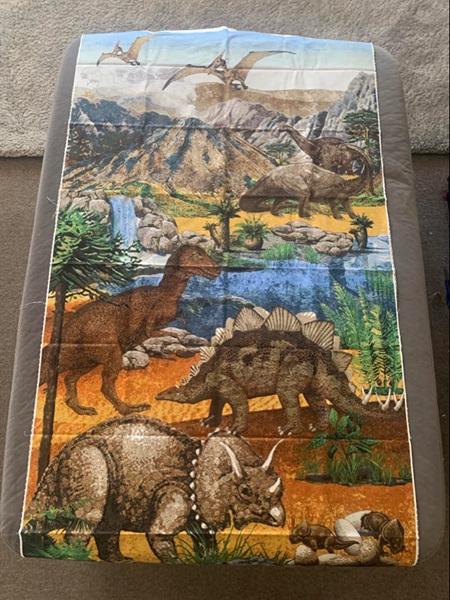 Custom Made Dinosaur Blanket