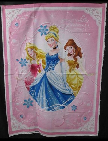 Custom Made Princess Blanket