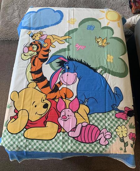 Custom Made Winnie The Pooh Blanket 2