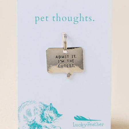 Cutest Pet Tag