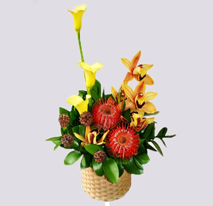 Seasonal bright Basket Arrangement