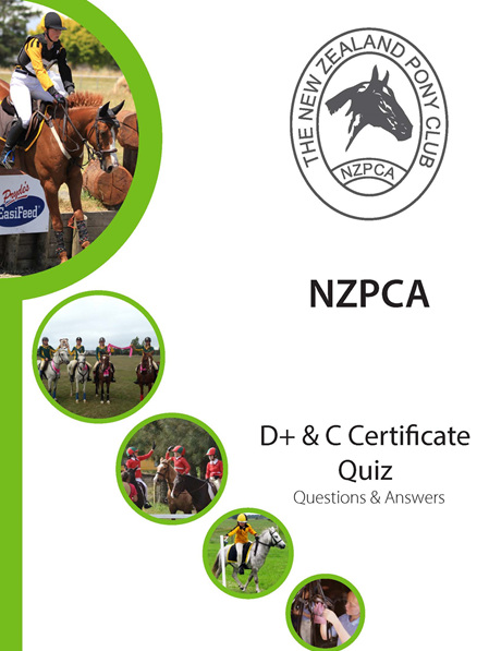 D+ C Certificate Quiz