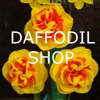 Daffodil Shop