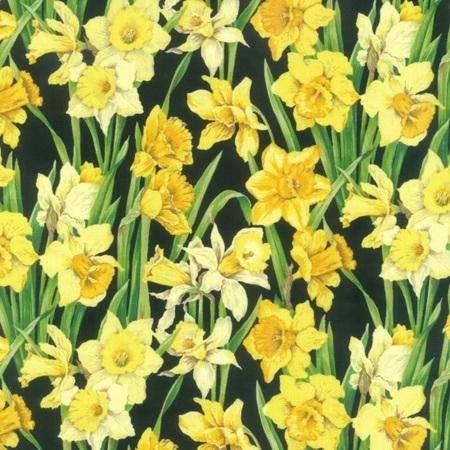 Daffodils NT89420102