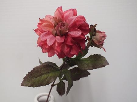 Dahlia Cottage Old Pink 4525