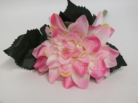 Dahlia cut stem Pink 4341