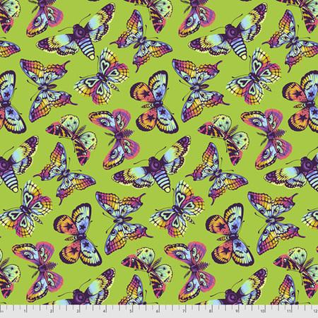 Daydreamer Butterfly Kisses Avocado PWTP172.Avocado PREORDER