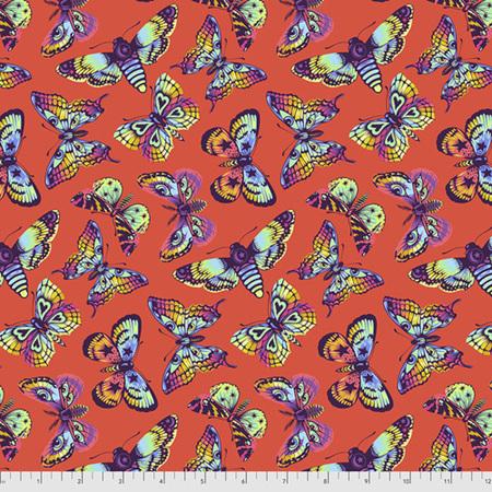 Daydreamer Butterfly Kisses Papaya PWTP172.Papaya PREORDER