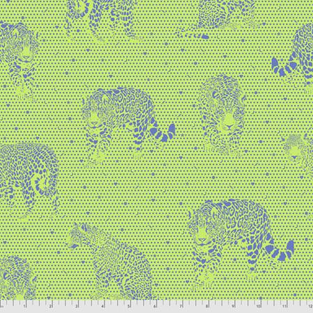 Daydreamer Lil Jaguars Kiwi PWTP174.Kiwi PREORDER