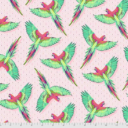 Daydreamer Macaw Ya Later Dragonfruit PWTP170.Dragonfruit PREORDER