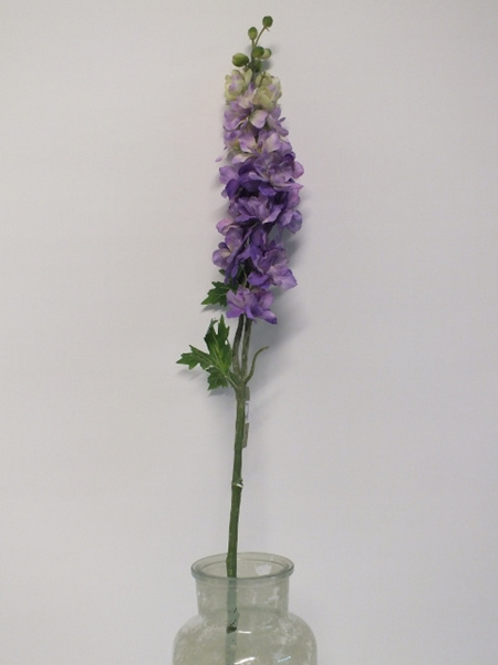 Delphinium Purple 1855