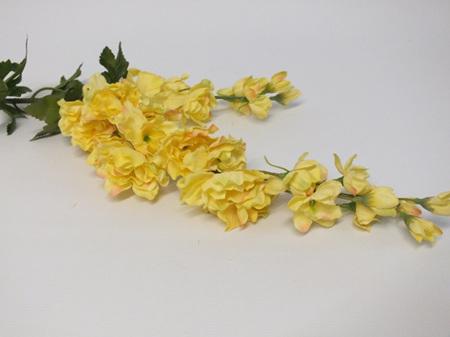 Delphinium Yellow 4504