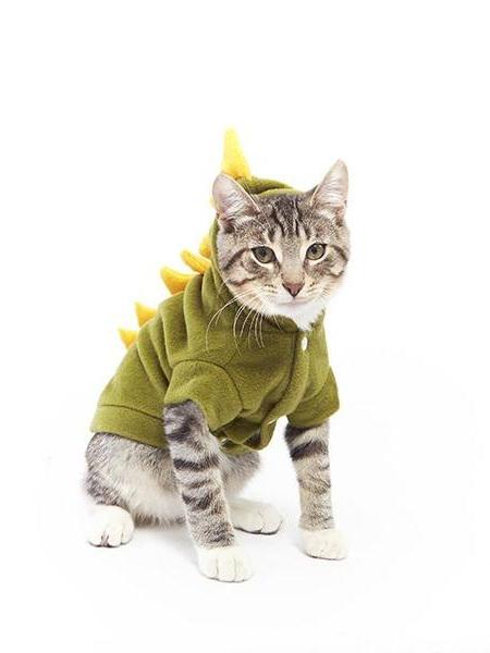 Dinosaur Costume for Cats