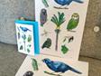 Discover NZ Prints
